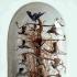 Victoriaanse stolp met o.a. 14 opgezette kolibri's