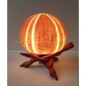 Unieke Zeeappel Lamp